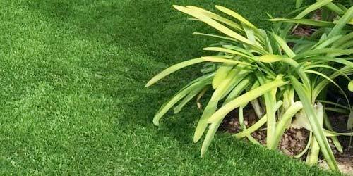 complementos-jardin
